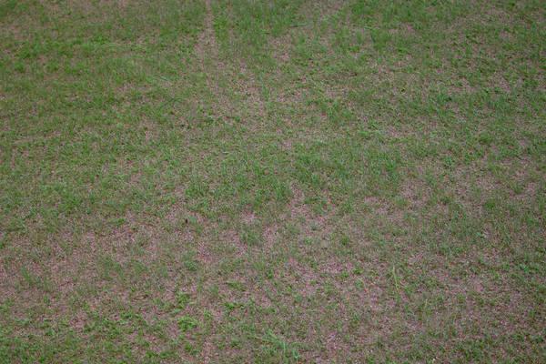 baujan-field-turf-install-2003-05-25_19