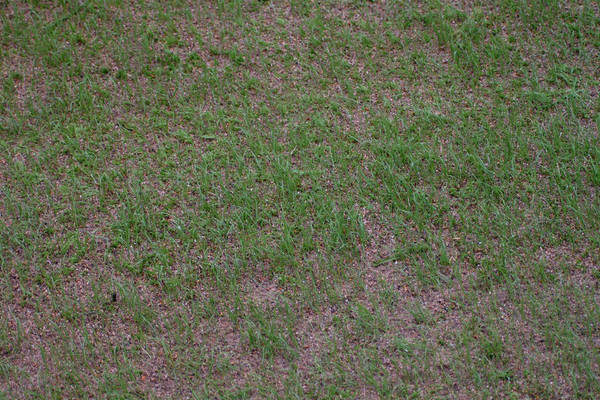 baujan-field-turf-install-2003-05-25_20