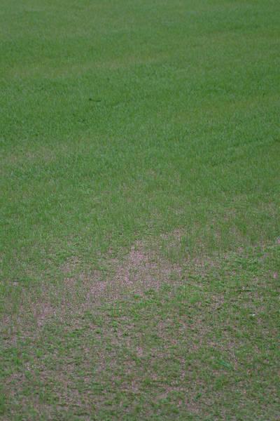 baujan-field-turf-install-2003-05-25_21